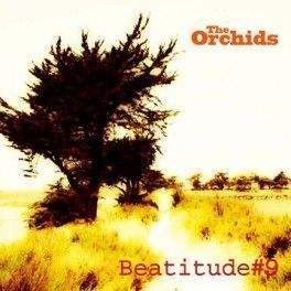 "The Orchids - ""Beatitude 9"""